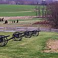 cannon dot the battlefield...